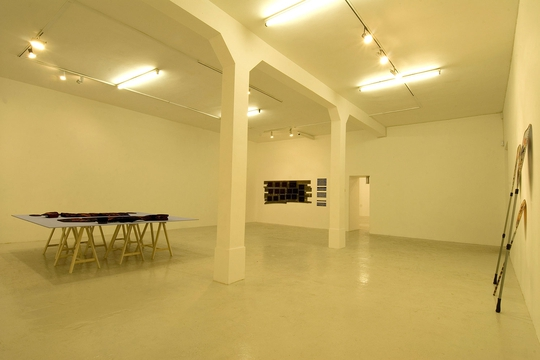 Fernando Marques Penteado Promised Lands installation view (2009)